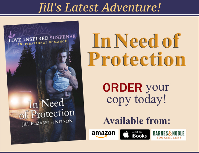 Read about Jill Elizabeth Nelson's Newest Book, In Need of Protection Today!